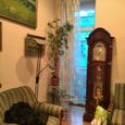 Аренда 2-х комнатной квартиры на ул. Антоновича 38 Б.