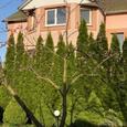 Продажа дома в Малой Александровке