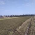 Продаж земельної ділянки с.Пилипча.