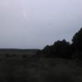 Продажа  участка 1.6Га Конча Заспа в  лесу